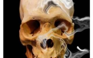 Сколько веществ содержится в табачном дыме