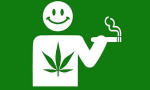 Курят ли листья конопли