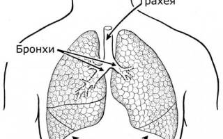 Нехватка воздуха при курении