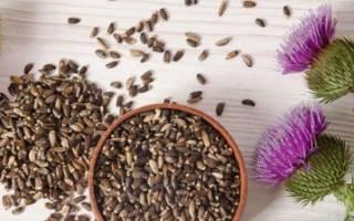 Лекарства на основе расторопши для восстановления печени