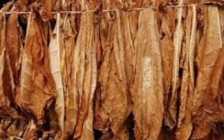 Как приготовить табак в домашних условиях