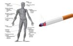 Как восстановить кожу после курения