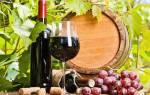 Повышает ли красное вино гемоглобин в крови