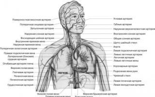 Как курение влияет на кровь
