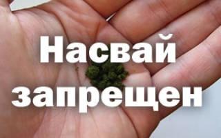 Запрещен ли насвай в россии