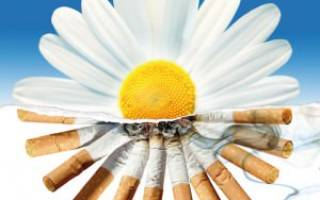 Народный метод как бросить курить