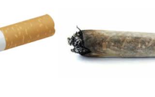 Самокрутки или сигареты что дешевле
