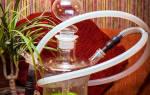 Чаша для кальяна из яблока как сделать