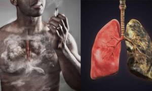 Восстанавливаются ли легкие после отказа от курения