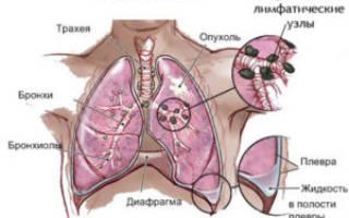 За сколько выходит никотин из организма полностью