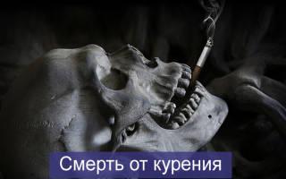Смертность от курения в мире