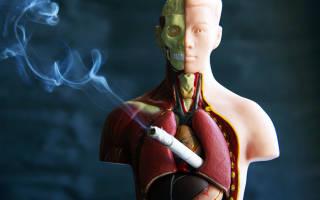 Индекс курящего человека калькулятор