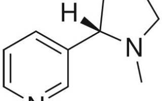 Сколько никотина вырабатывает организм человека в сутки