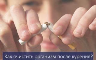 Бросил курить как очистить организм