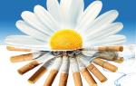 Вредна ли жидкость без никотина