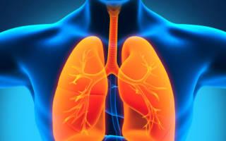 Когда очистится организм после курения