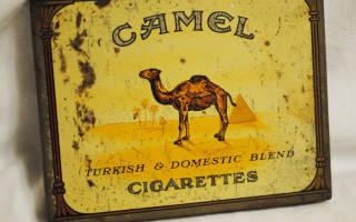 Сколько никотина в camel