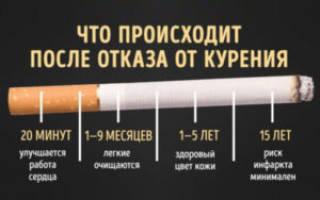 Когда восстанавливается организм после курения