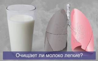 Очищает ли молоко легкие от никотина